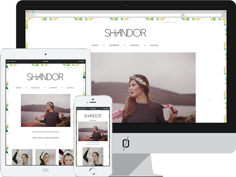 Creation site ecommerce wordpress shandor
